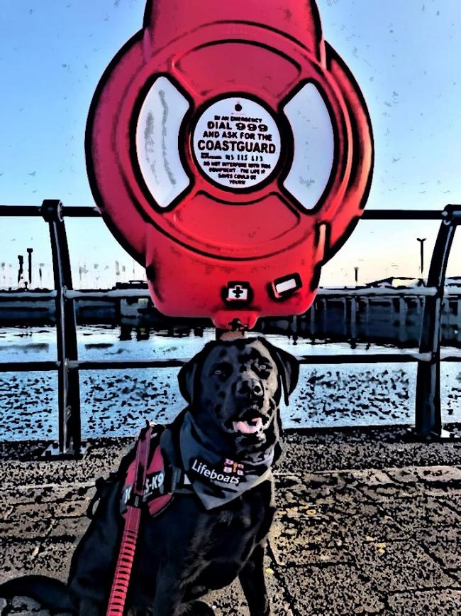 Summer Safety campaign with Ardrossan Coastguard – Danger for dogs on visits to the coastline
