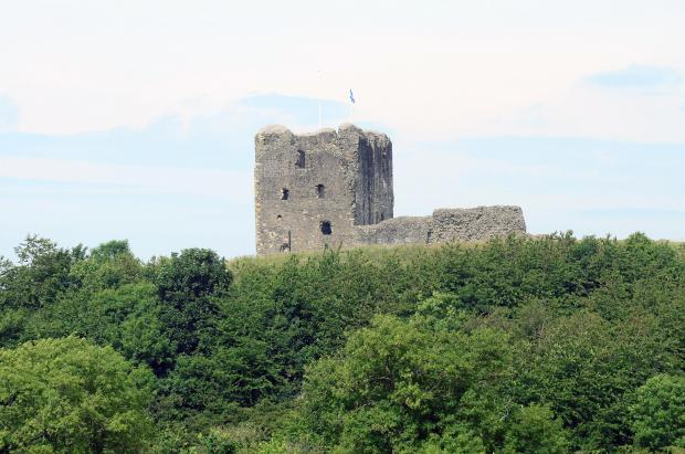 Ardrossan and Saltcoats Herald: Dundonald castle