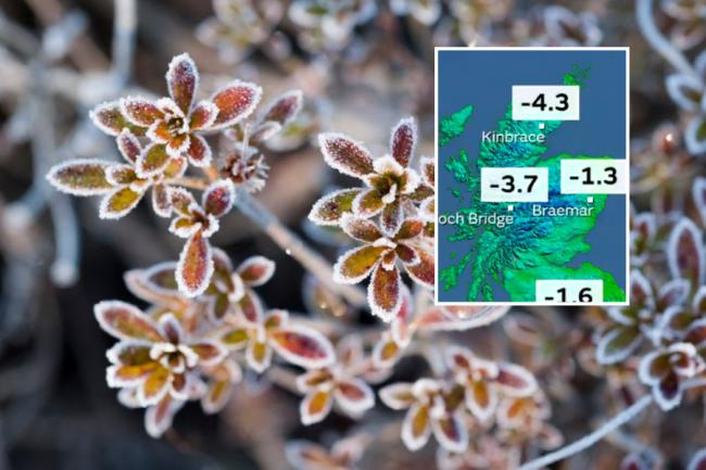 Temperatures earlier this week dipped to -5C