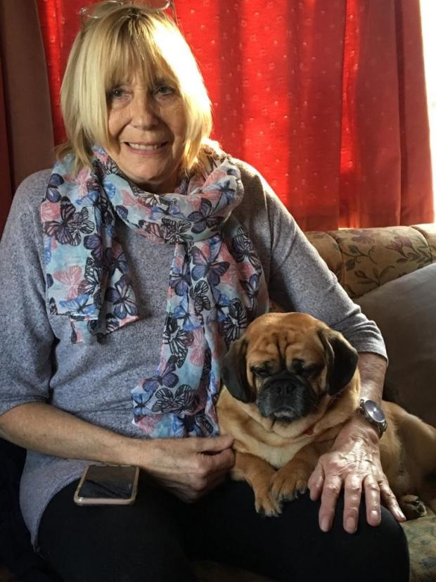 Ardrossan and Saltcoats Herald: Sandra Rolfe and her Crossbreed Penny, a mix of Pug and King Charles Spaniel. Picture: Vets Now
