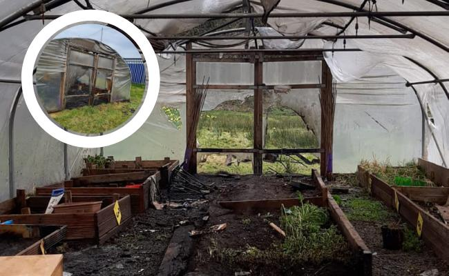 Community Trust asks culprits to come forward after astro polytunnel burned down