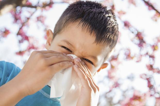 Ardrossan and Saltcoats Herald: COUGHS AND SNEEZES Children remain infectious with flu for much longer than adults