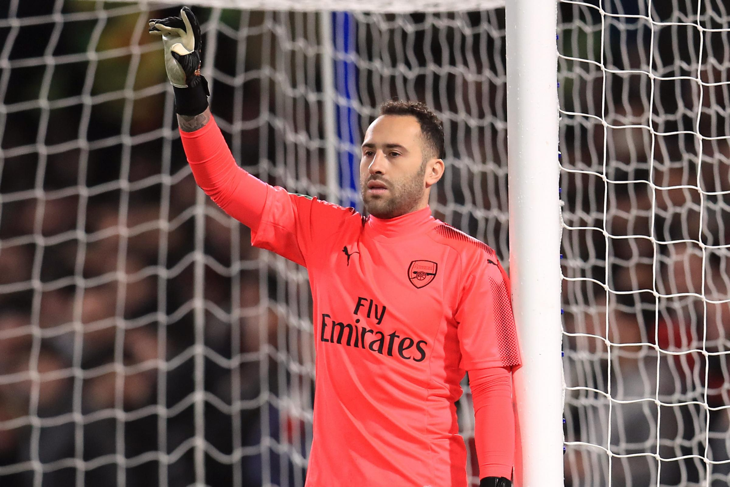 Napoli goalkeeper David Ospina suffered concussion against Udinese